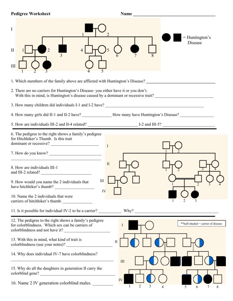 Key Pedigree Analysis Worksheet Mrs Paulik S Website Pedigree