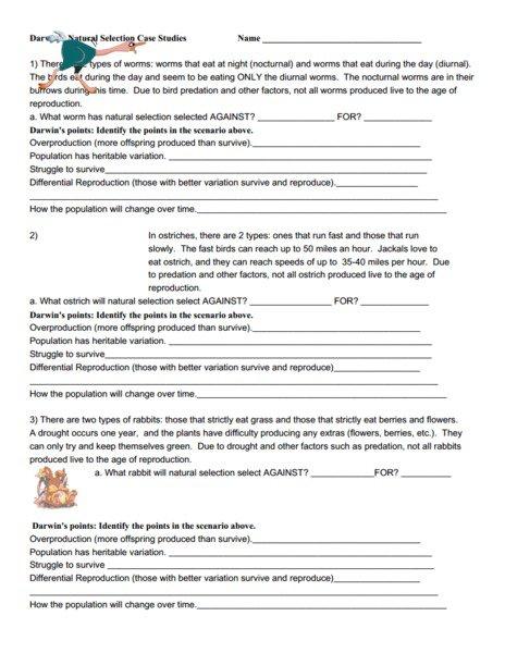 Natural Selection Worksheet Answer Key Natural Selection Worksheet