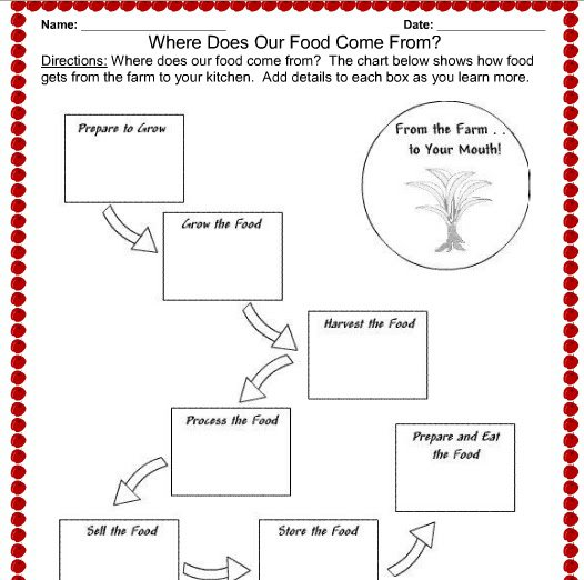 Nutrition Worksheets For High School Worksheets For All