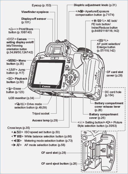 Parts Of A Digital Camera Worksheet – Webmart Me