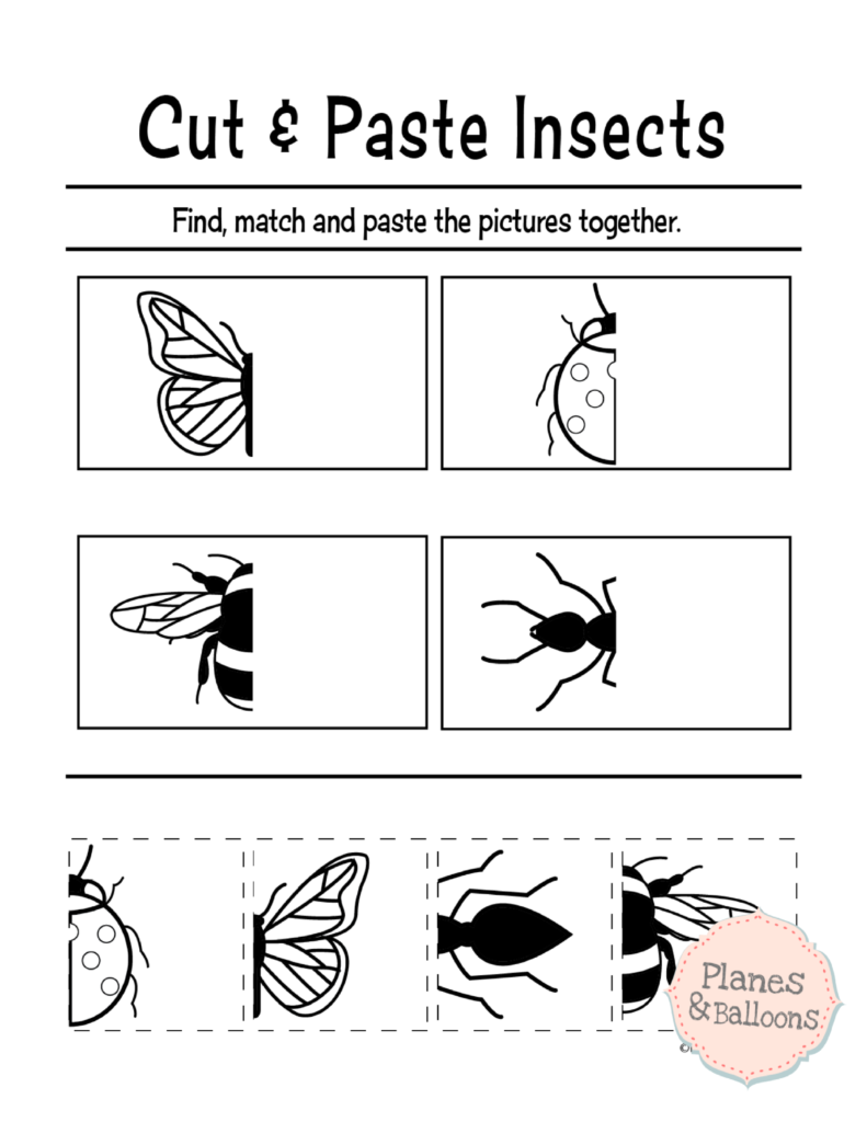 Preschool Color Cut Paste Worksheets 588875