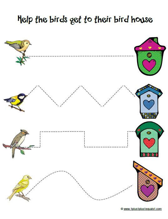 Preschool Worksheets Birds 1374029