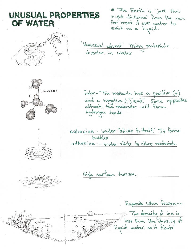 Properties Of Water Worksheet The Best Worksheets Image Collection