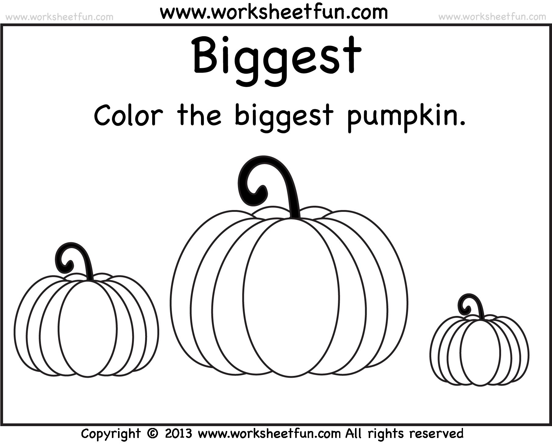 Pumpkin Worksheets For Kindergarten The Best Worksheets Image