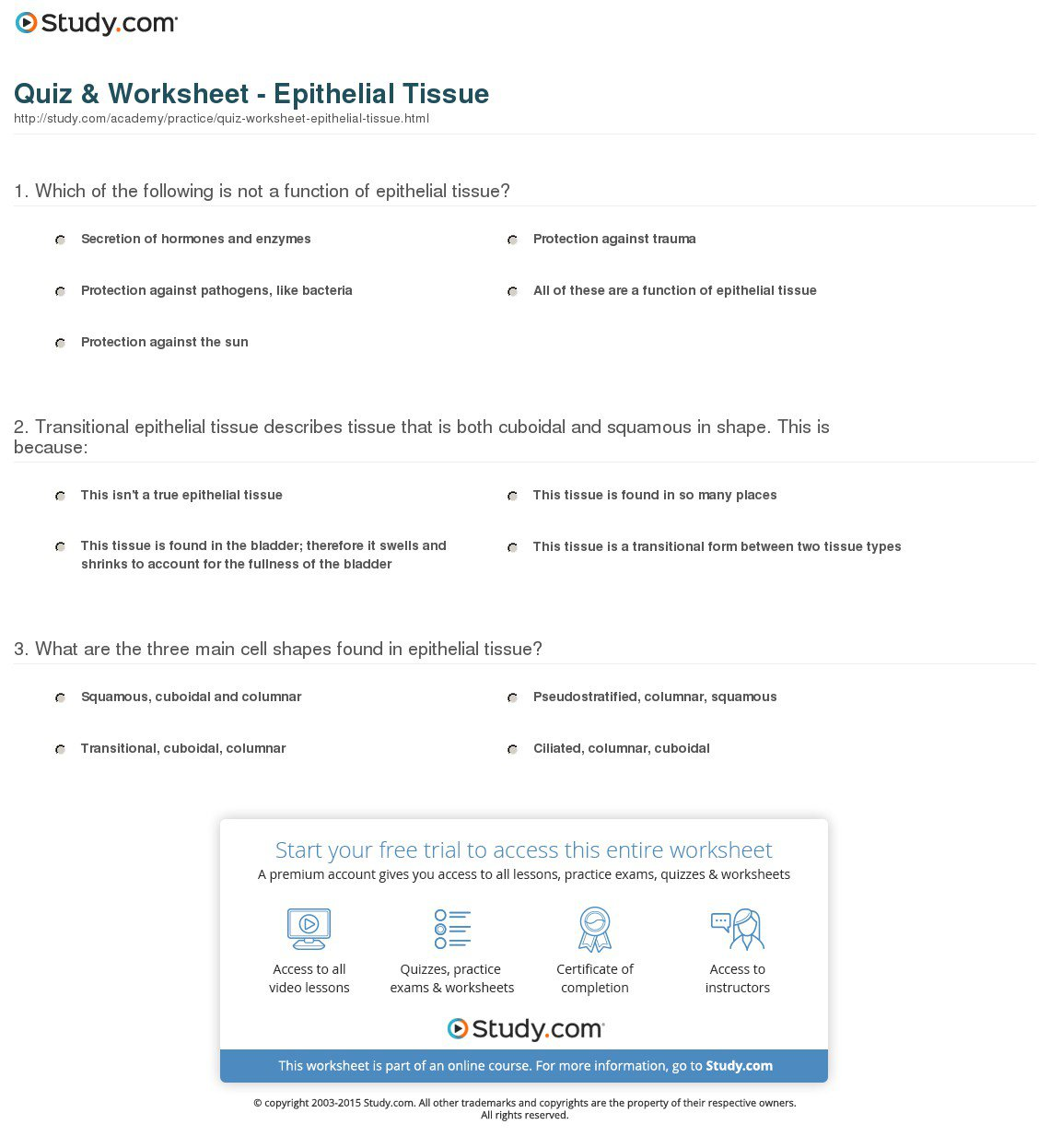 Quiz Worksheet Epithelial Tissue Referring Anatomy And Physiology