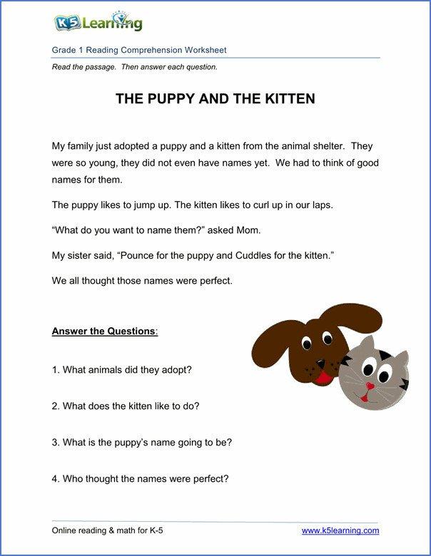 Reading Comprehension Worksheets 1st Grade
