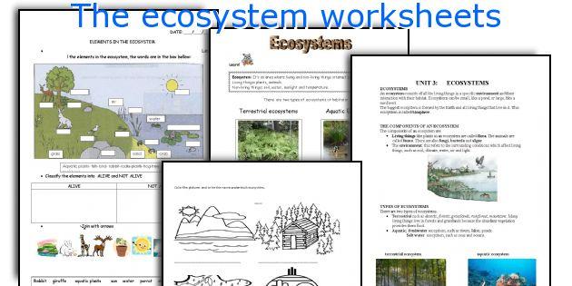 The_ecosystem_worksheets Jpg