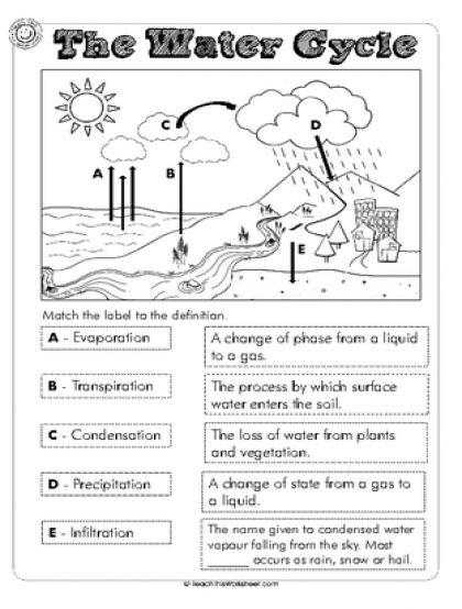 The Water Cycle Worksheets 168773