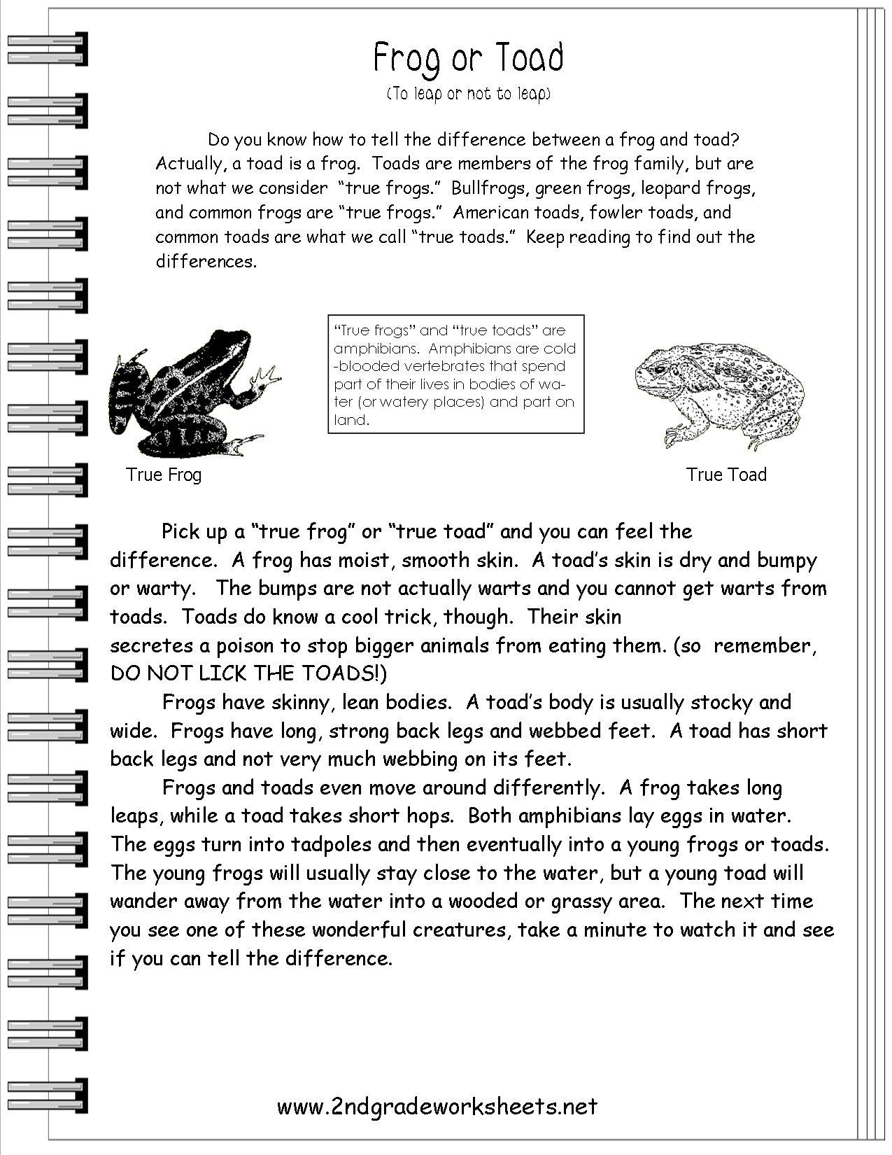 17 Best Images Of Informational Text Comprehension Worksheets