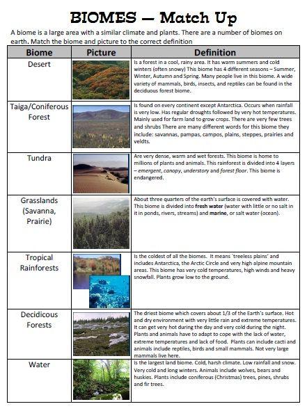 202 Best Life Science Images On Free Worksheets Samples