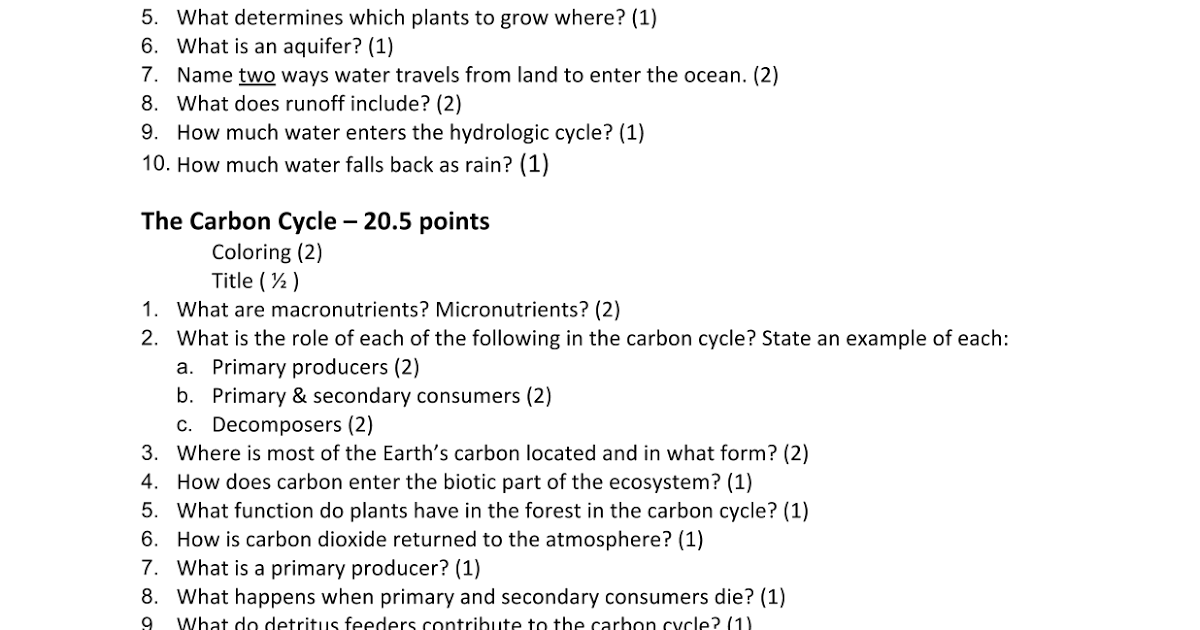 28 Unique Water Carbon And Nitrogen Cycle Worksheet Answer Key