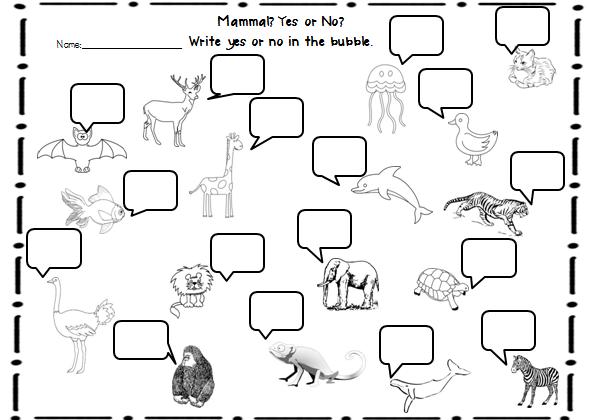 44 Classifying Animals Worksheet, Animal Classification Worksheet