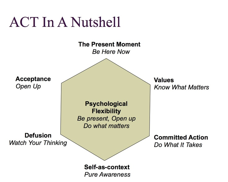 Acceptance And Commitment Therapy Worksheets Act In A Nutshell
