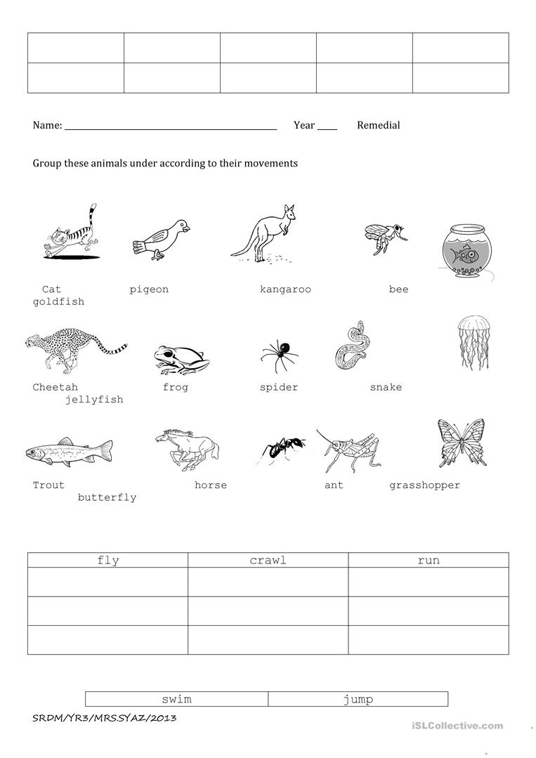 Animal Movements Worksheets For Kindergarten 923295