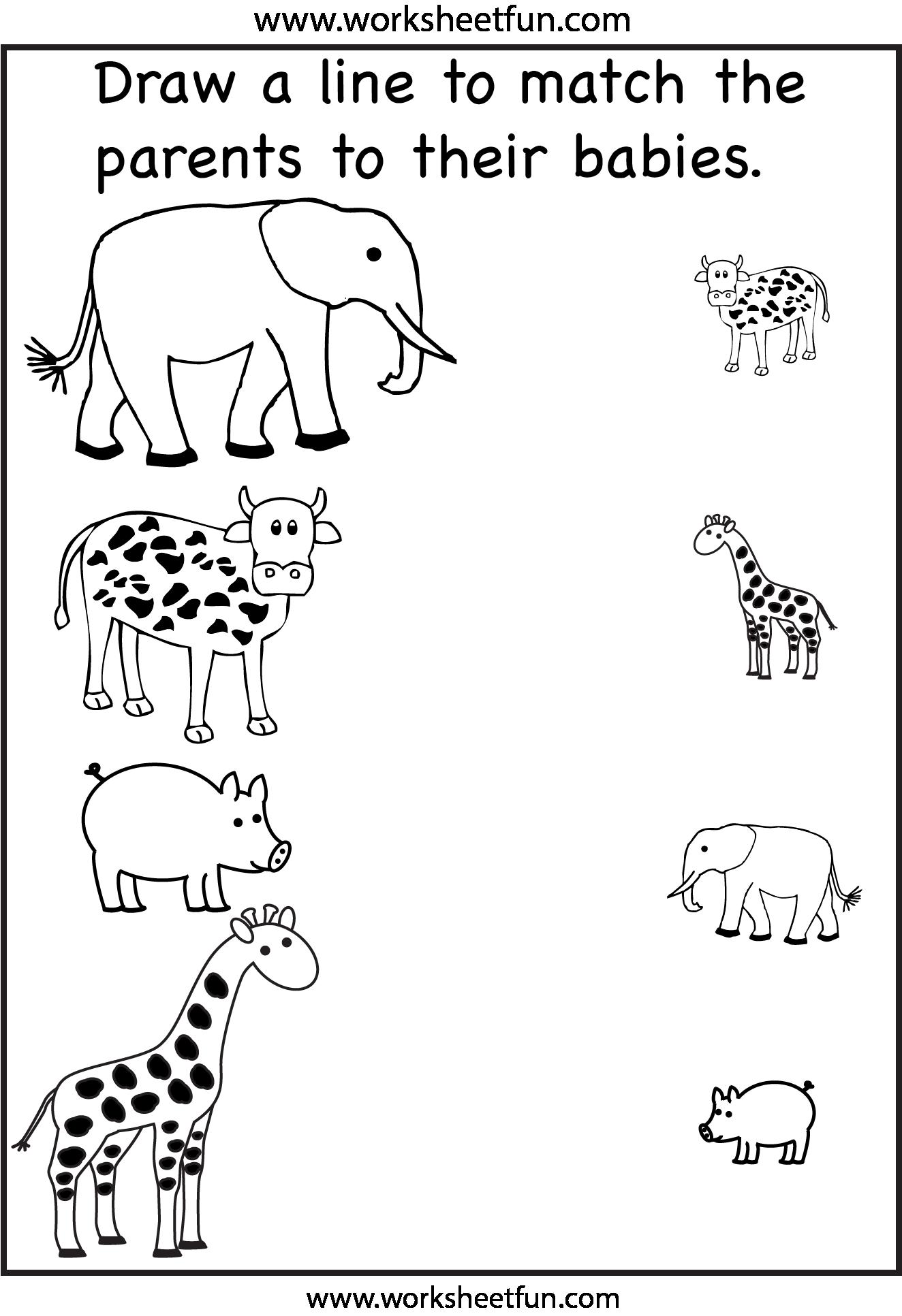 Animal Worksheets For Kindergarten 12303