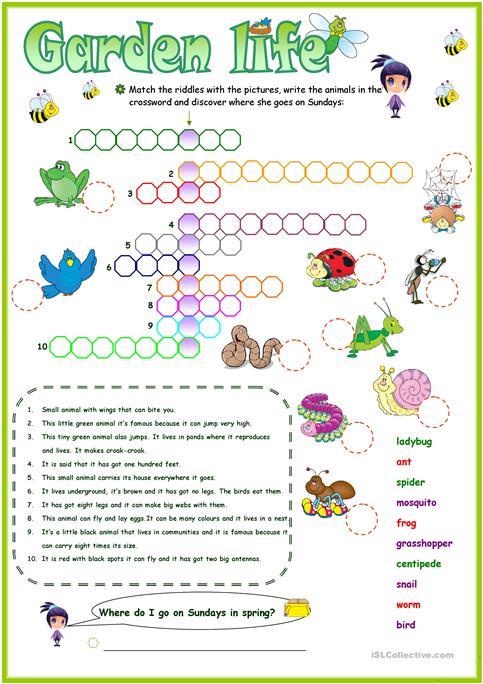 Animals In The Garden Crossword Worksheet
