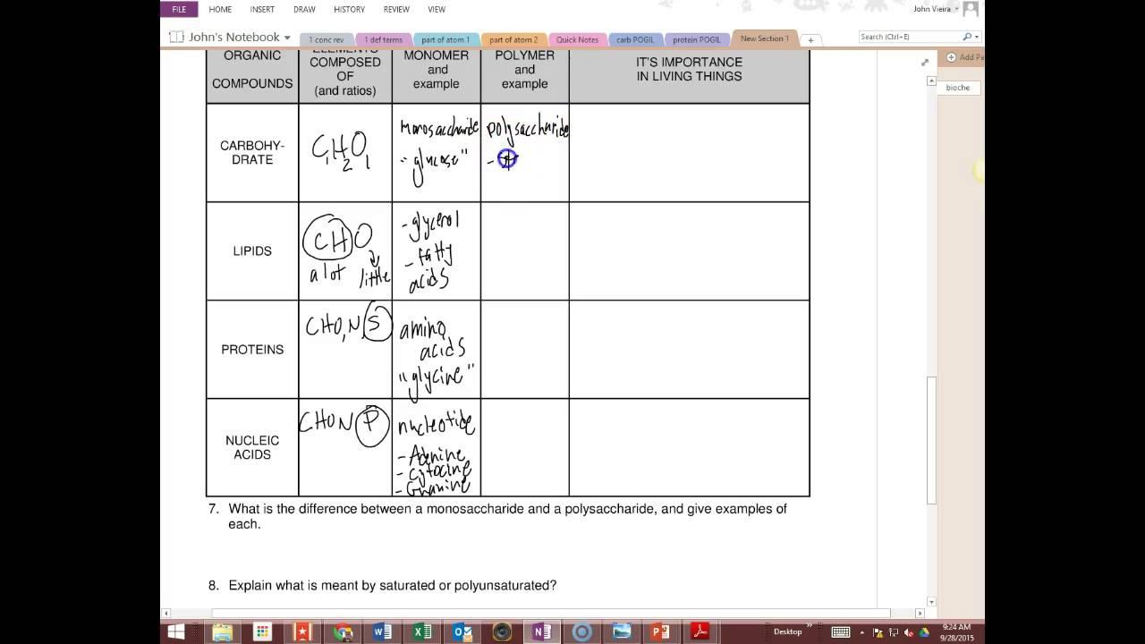 Biochemistry Worksheets 163916