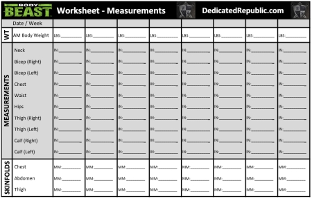 Body Measurement Worksheet