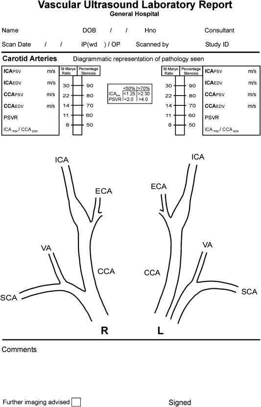 Carotid Ultrasound Worksheets Templates