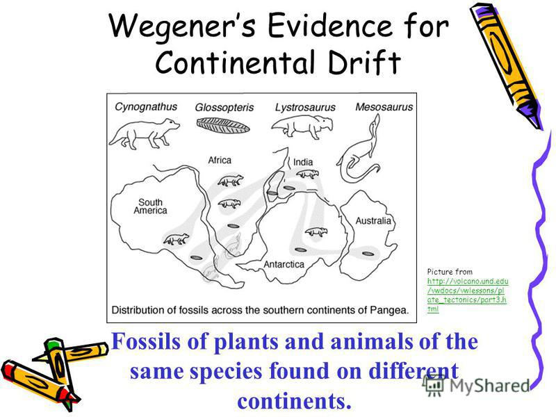 Collection Of Continental Drift Worksheets