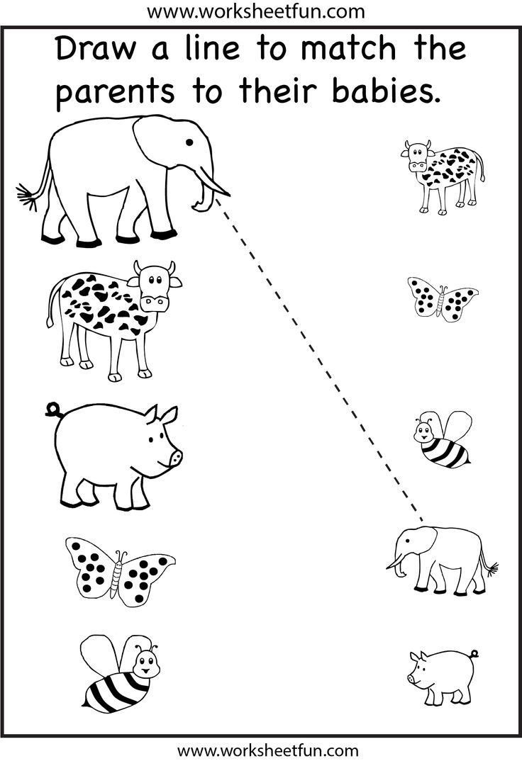 Collection Of Preschool Matching Worksheets Pdf