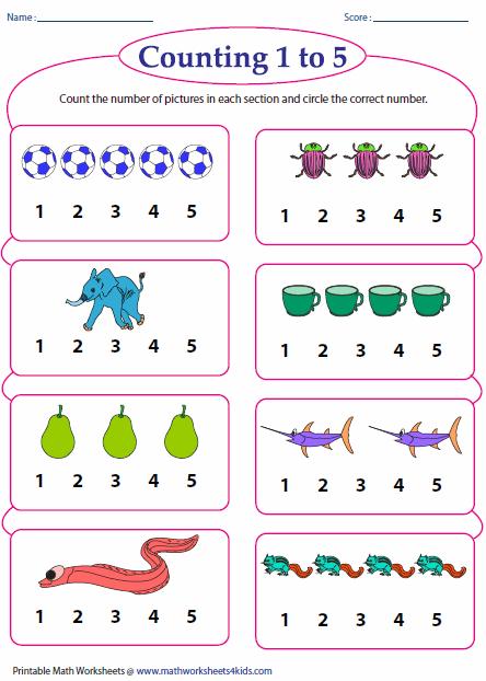 Counting Sets Worksheets For Kindergarten  16592