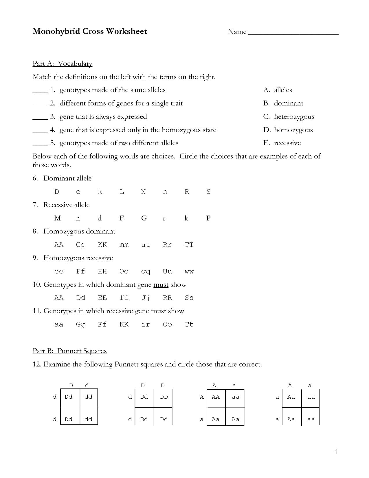 Dihybrid Cross Homework Problems Answer Key