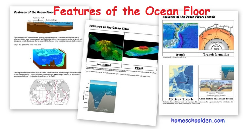 Features Of The Ocean Floor Projects