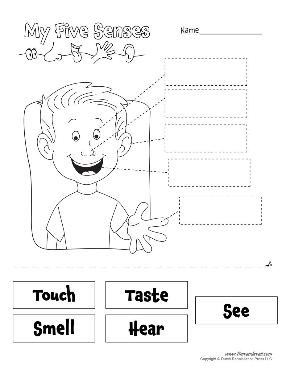 Free Five Senses Worksheets For Preschool 417864