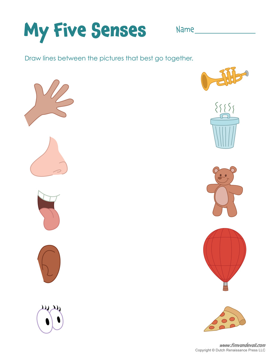 Free Printable Worksheets Kindergarten Five Senses 610897