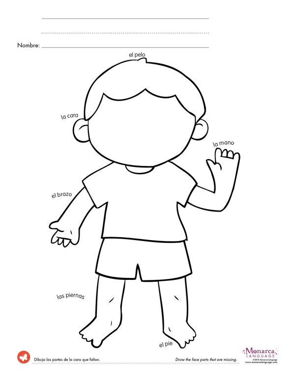 Free Printable Worksheets Preschool Body Parts 120859