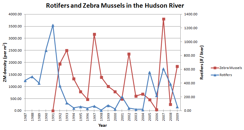 Graphing And Interpreting Zebra Mussel Data