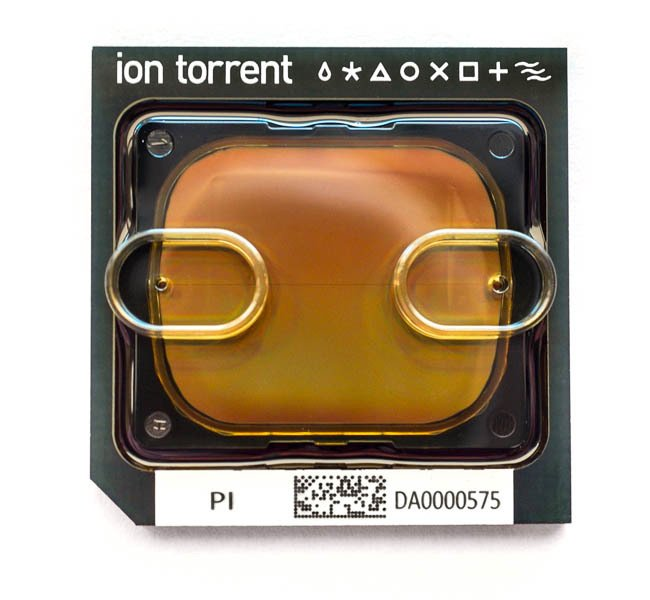 Ion Pi Chip Kit V3