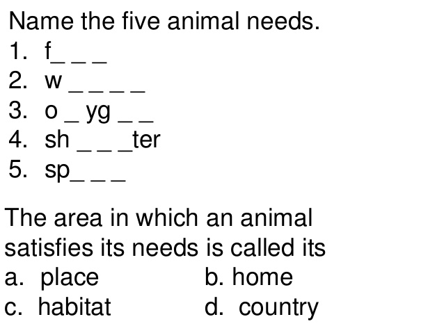 Kindergarten Animal Needs Worksheets