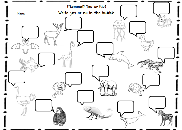 Mammals Worksheets First Grade The Best Worksheets Image