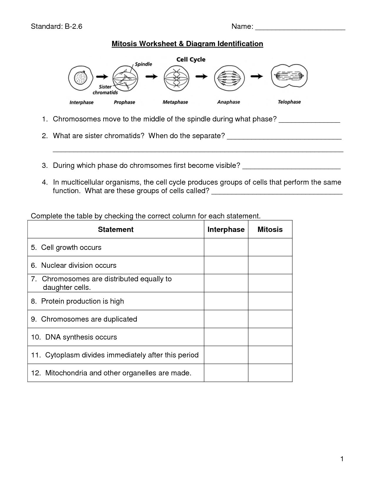 Mitosis Diagram Identification Sheet