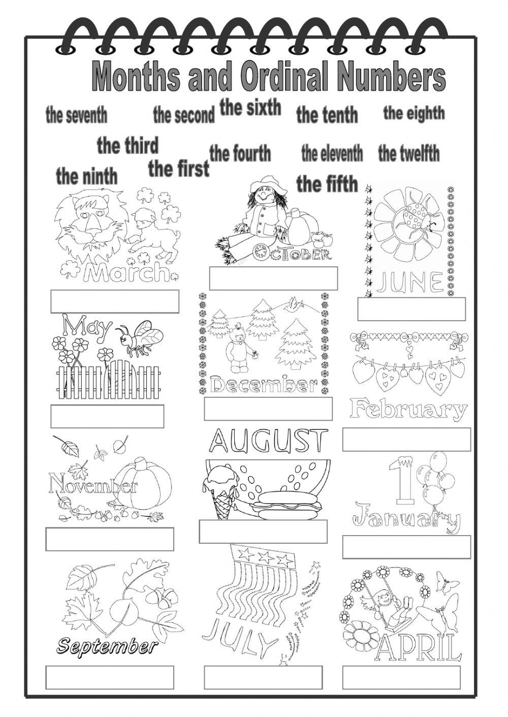 Months Worksheet 380797