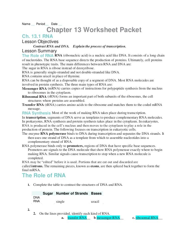 Nucleic Acids Worksheet Answer Key  1099310