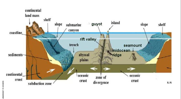 Ocean Floor Lesson