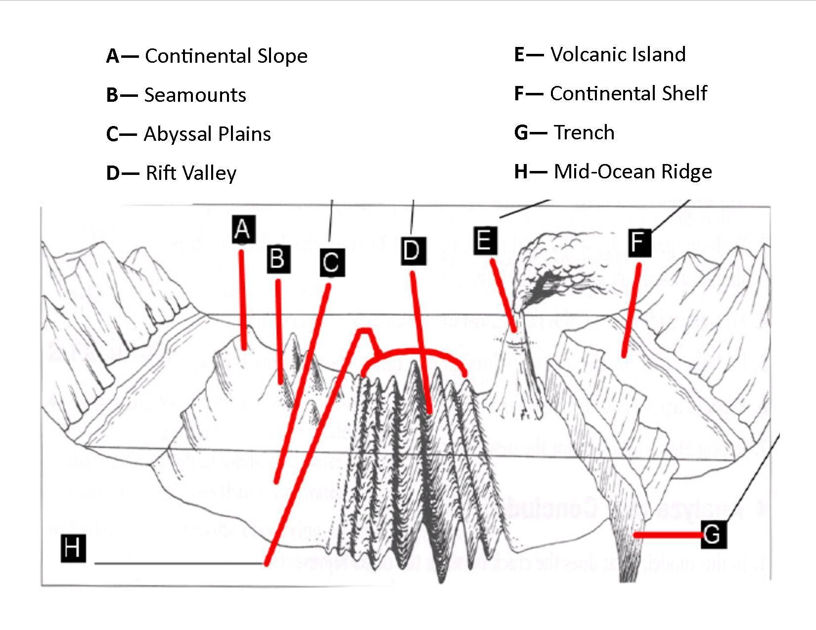 Pdf Of The Ocean Floor Diagram 5th Grade