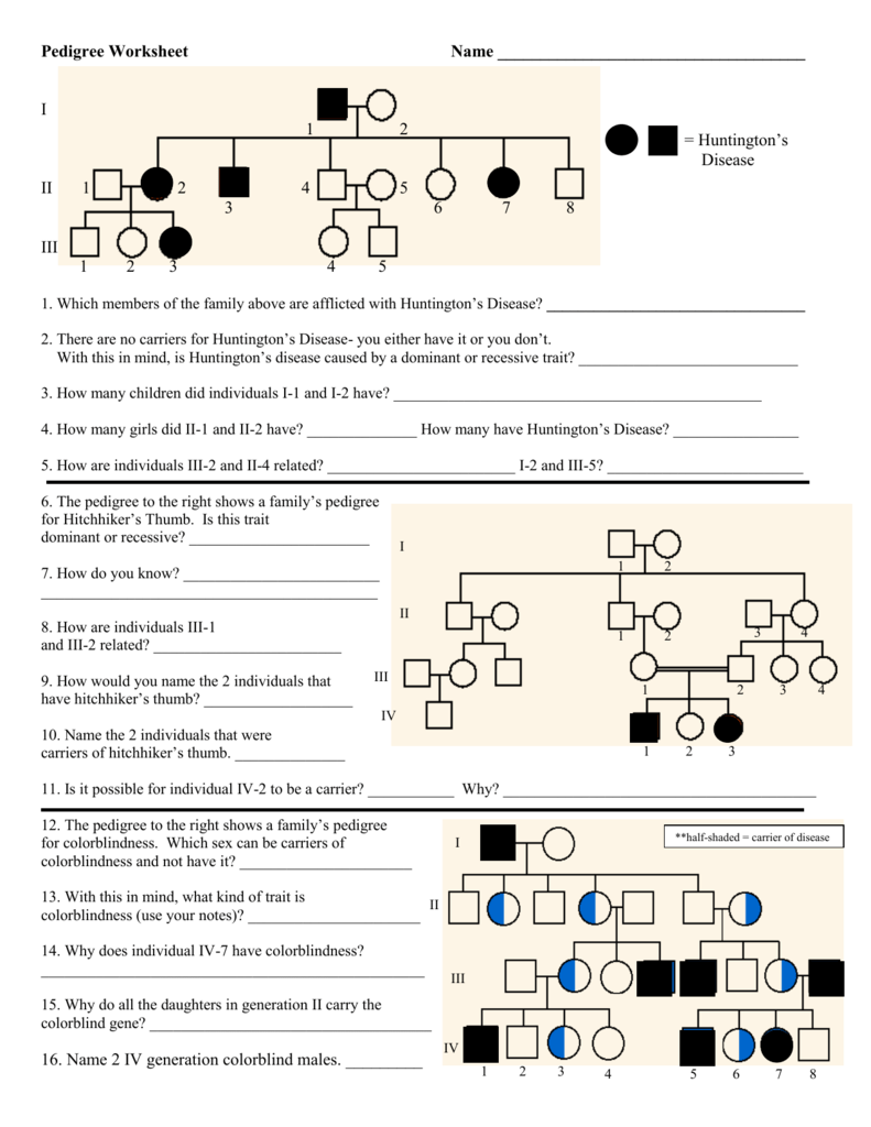 Pedigree Worksheet Key