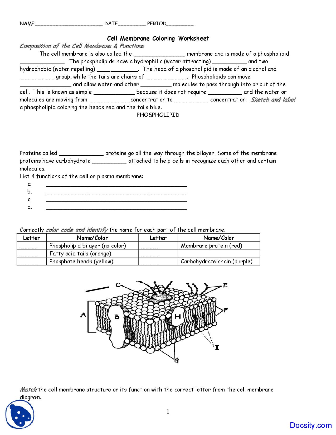 Plasma Membrane Diagram Worksheet