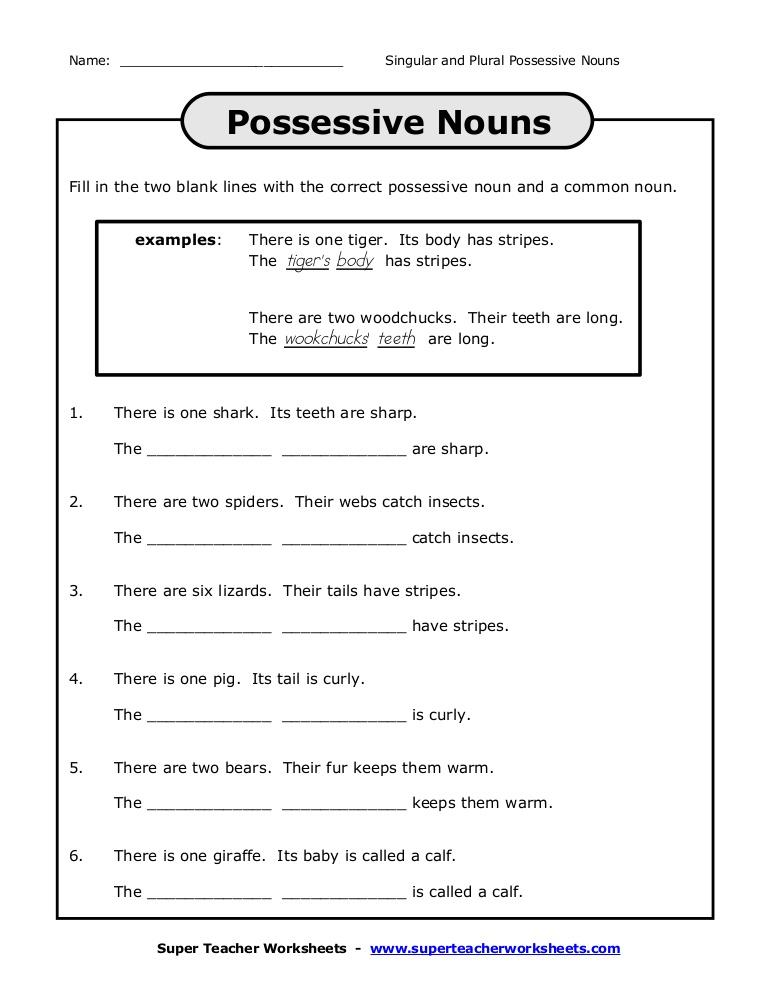 Plural Possessive Worksheet 658194