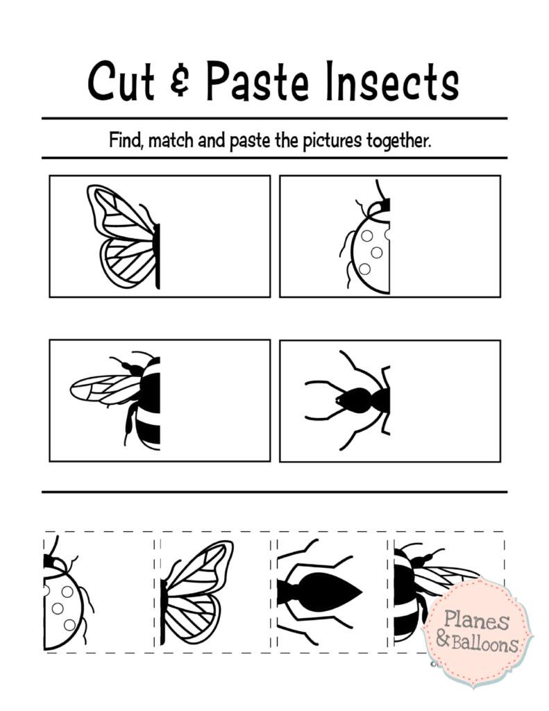Preschool Cut Paste Printable Worksheets 568471