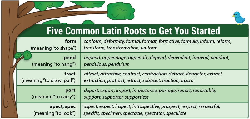 Teach Latin Roots With Word Trees + Free Download And Video!