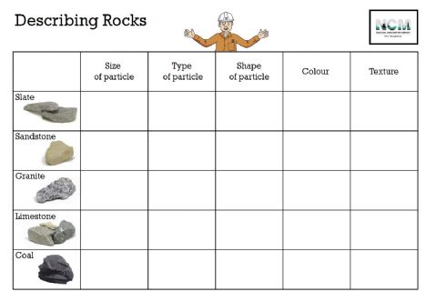 Types Of Fossils Worksheet The Best Worksheets Image Collection