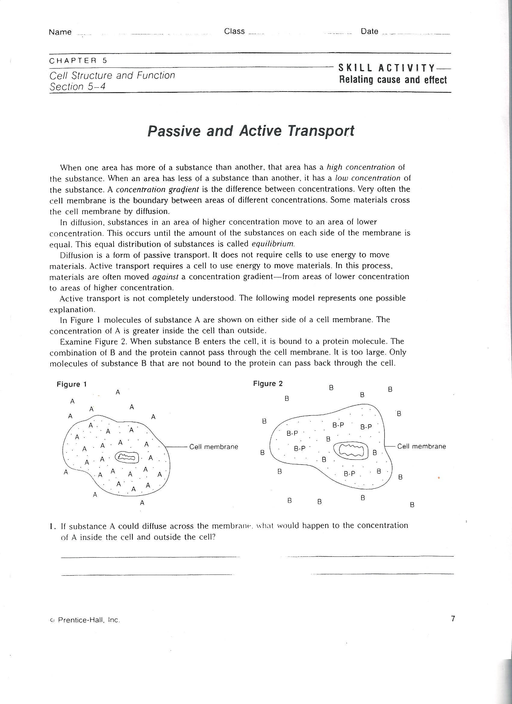 Uncategorized Active And Passive Transport Worksheet, Passive And