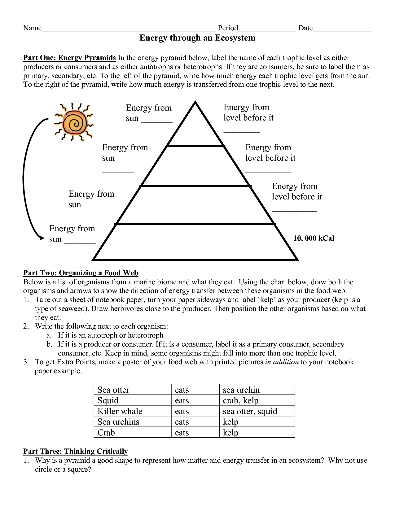 Worksheet Energy Pyramid 1251184