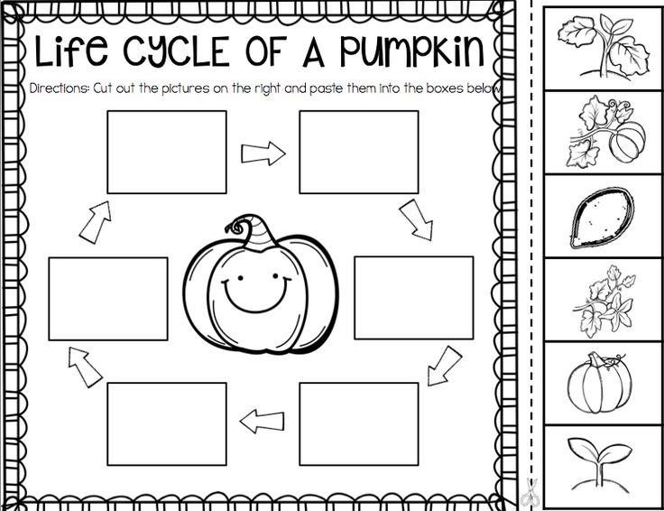 32 Best Pumpkin Images On Free Worksheets Samples