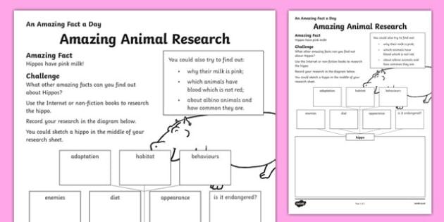 Amazing Animal Research Worksheet   Activity Sheet, Worksheet